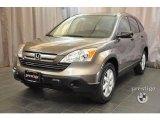 2009 Urban Titanium Metallic Honda CR-V EX 4WD #36621963