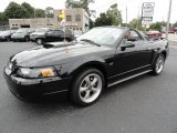 2001 Black Ford Mustang GT Convertible #36622799