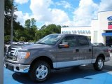 2010 Sterling Grey Metallic Ford F150 XLT SuperCrew #36622165