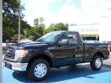 2010 Tuxedo Black Ford F150 XL Regular Cab #36622166