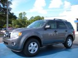 2011 Sterling Grey Metallic Ford Escape XLT V6 #36622180
