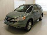 2010 Opal Sage Metallic Honda CR-V EX-L #36712240
