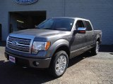 2010 Sterling Grey Metallic Ford F150 Platinum SuperCrew 4x4 #36767145