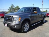 2010 Sterling Grey Metallic Ford F150 FX4 SuperCab 4x4 #36767148