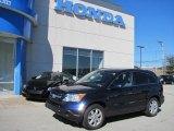2009 Royal Blue Pearl Honda CR-V EX-L 4WD #36816880