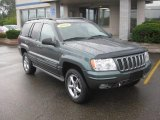 2002 Onyx Green Pearlcoat Jeep Grand Cherokee Overland 4x4 #36856877