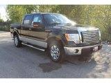 2010 Tuxedo Black Ford F150 XLT SuperCrew #36856379