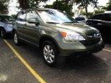 2007 Borrego Beige Metallic Honda CR-V EX-L #36962870