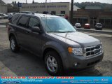2011 Sterling Grey Metallic Ford Escape XLT V6 4WD #36963212