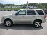 2003 Gold Ash Metallic Ford Escape Limited 4WD #37033018