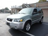 2006 Titanium Green Metallic Ford Escape Hybrid 4WD #37033221
