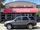 2006 Dark Shadow Grey Metallic Ford Escape XLT V6 #37125352