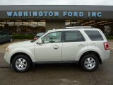2009 Light Sage Metallic Ford Escape Limited #37225370