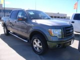 2010 Sterling Grey Metallic Ford F150 FX4 SuperCrew 4x4 #37225665