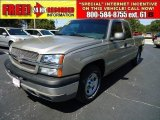 2003 Light Pewter Metallic Chevrolet Silverado 1500 LS Extended Cab #37532287