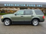 2003 Estate Green Metallic Ford Explorer XLT 4x4 #37584902