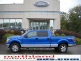 2010 Blue Flame Metallic Ford F150 XLT SuperCrew 4x4 #37584524