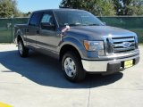 2010 Sterling Grey Metallic Ford F150 XLT SuperCrew #37637897