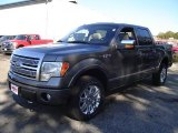 2010 Sterling Grey Metallic Ford F150 Platinum SuperCrew 4x4 #37699271