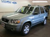 2006 Titanium Green Metallic Ford Escape Hybrid 4WD #37777746
