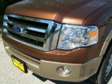 2011 Golden Bronze Metallic Ford Expedition XLT #37896233