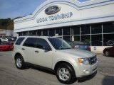 2009 Light Sage Metallic Ford Escape XLT V6 4WD #37896325