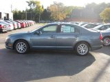 2011 Steel Blue Metallic Ford Fusion SEL #37946083