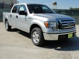 2010 Ingot Silver Metallic Ford F150 XLT SuperCrew #38010041