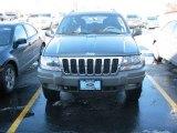 2002 Graphite Metallic Jeep Grand Cherokee Sport 4x4 #3796429