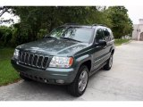 2002 Onyx Green Pearlcoat Jeep Grand Cherokee Overland 4x4 #38076414