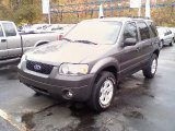 2006 Dark Shadow Grey Metallic Ford Escape XLT V6 4WD #38076054
