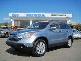 2009 Glacier Blue Metallic Honda CR-V EX-L 4WD #38076657