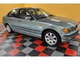 2004 Grey Green Metallic BMW 3 Series 325xi Sedan #38169956