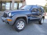 2002 Patriot Blue Pearlcoat Jeep Liberty Sport #38170370