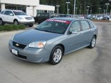 2007 Golden Pewter Metallic Chevrolet Malibu Maxx LT Wagon #38276920