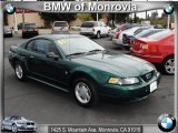 2001 Dark Highland Green Ford Mustang V6 Coupe #38342297