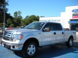 2010 Ingot Silver Metallic Ford F150 XLT SuperCrew 4x4 #38412769