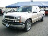 2005 Silver Birch Metallic Chevrolet Silverado 1500 LS Extended Cab #38413501
