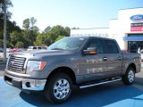 2010 Sterling Grey Metallic Ford F150 XLT SuperCrew #38474550