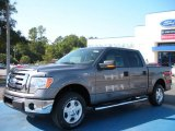 2010 Sterling Grey Metallic Ford F150 XLT SuperCrew #38474557