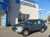 2010 Opal Sage Metallic Honda CR-V LX AWD #38474335