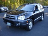 Hyundai Santa Fe 2005 Data, Info and Specs