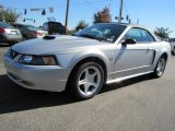 2001 Silver Metallic Ford Mustang GT Convertible #38475401