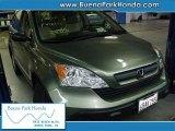 2008 Green Tea Metallic Honda CR-V LX #38549024