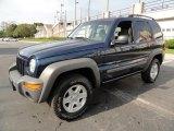2002 Patriot Blue Pearlcoat Jeep Liberty Sport 4x4 #38674419