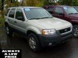 2003 Gold Ash Metallic Ford Escape XLT V6 4WD #38689514