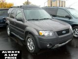 2006 Dark Shadow Grey Metallic Ford Escape XLT V6 4WD #38689546