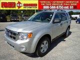 2009 Brilliant Silver Metallic Ford Escape XLT V6 #38690659