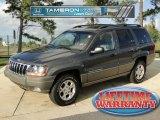 2002 Graphite Metallic Jeep Grand Cherokee Laredo #38690695