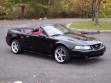 2001 Ford Mustang GT Convertible Data, Info and Specs
